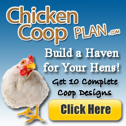 how to make a chicken house