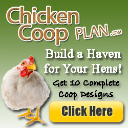 homemade chicken coops